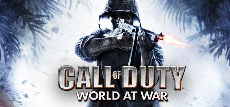 Call of Duty: World At War Banner
